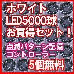 新イルミネーション5000球+電源5個無料(ホワイト)
