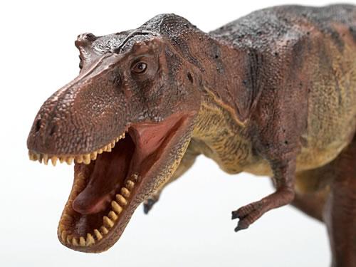 ティラノサウルスの画像 p1_14